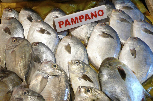 pescado-pampano.jpg