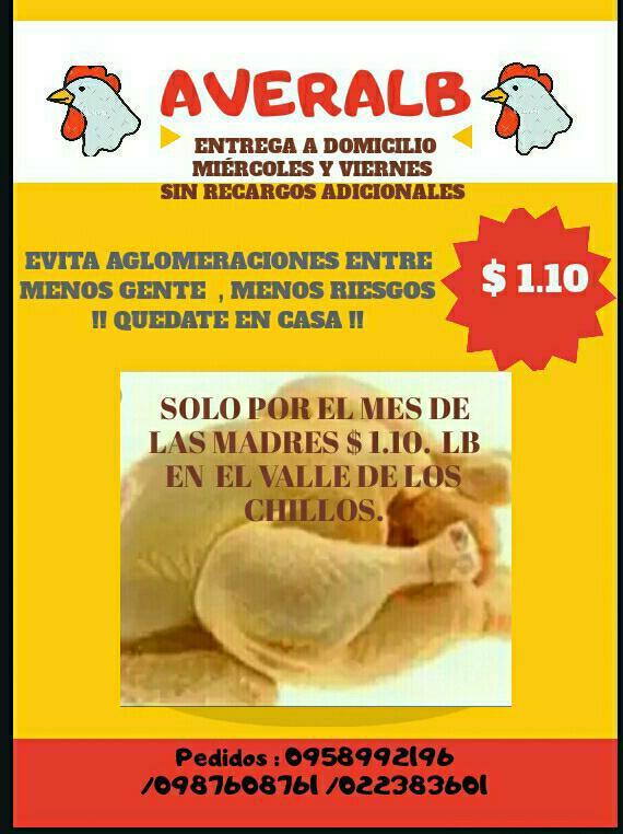 averalb-pollos-01.jpg